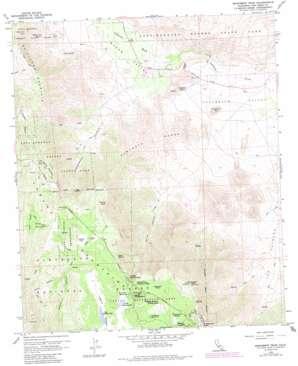 Monument Peak USGS topographic map 32116h4