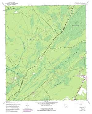 Ocean Bay topo map