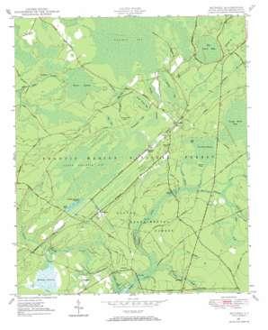 Bethera topo map