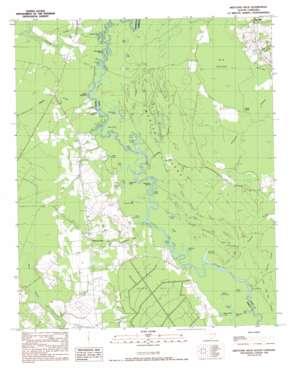 Britton Neck topo map