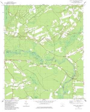 Maple Cane Swamp topo map