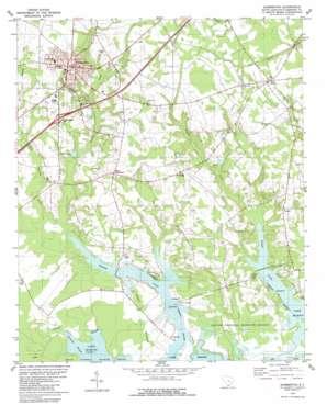 Summerton topo map