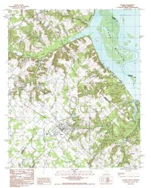 Elloree topo map