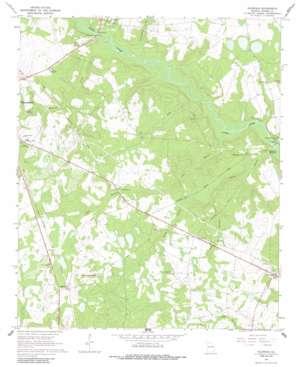 Idlewood topo map