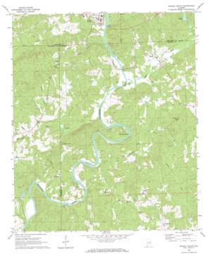 Wadley South topo map