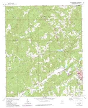 Roanoke West topo map