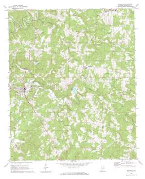 Wedowee topographic map al usgs topo quad 33085c4 for Wedowee lake level