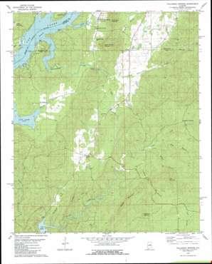 Talladega Springs topo map