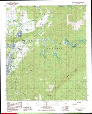 Sylacauga East topo map