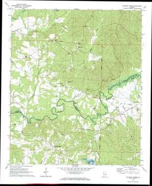 Pleasant Ridge topo map