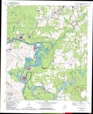 Aliceville South topo map