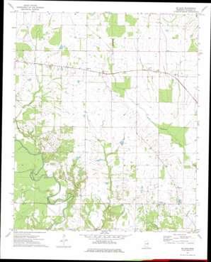 Mcleod topo map
