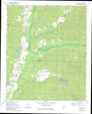 Cunningham topo map