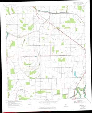 Bellewood topo map