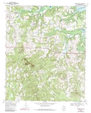 Bryans Mill topo map