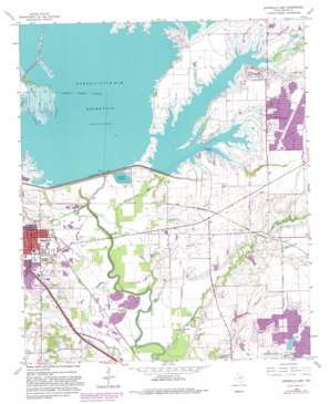 Lewisville East topo map