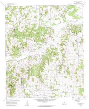 Cottondale topo map