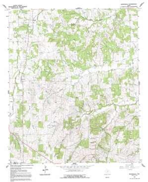 Boonsville topo map