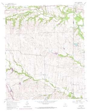 Bluett topo map