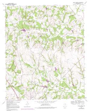 Pecan Creek topo map