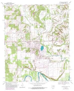 Burneyville topo map