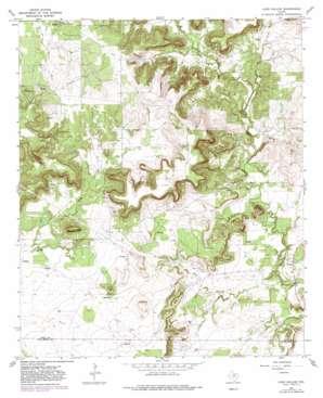 Long Hollow topo map
