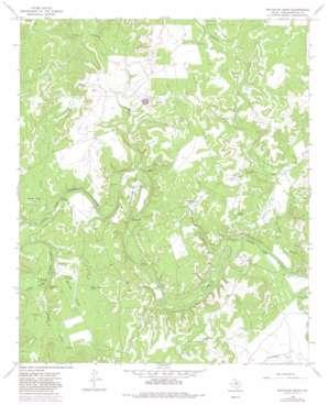 Reynolds Bend topo map