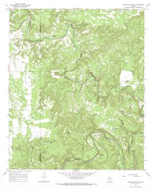 Hoover Mountain topo map