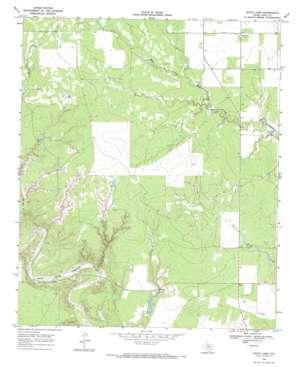 White Camp topo map