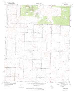 Tahoka Sw topo map