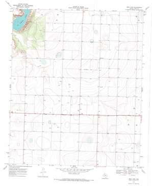 New Lynn topo map