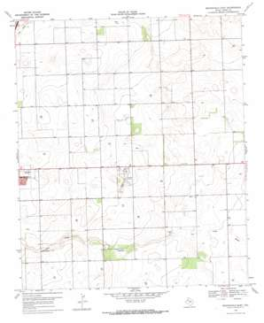 Brownfield East topo map