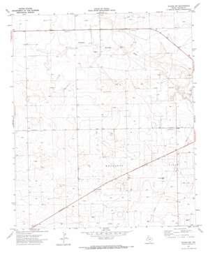 Plains Nw topo map
