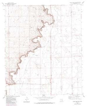 Cedar Point Se topo map