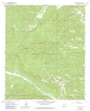 Turkey Peak topo map
