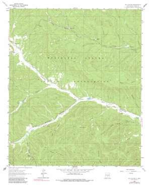 Elk-Silver topo map