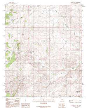 Flying H Nw topo map
