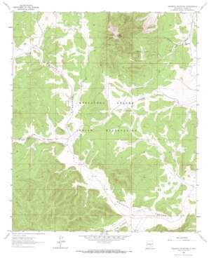 Pajarita Mountain topo map