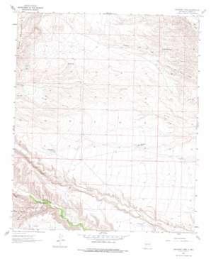 Saladone Tank topo map