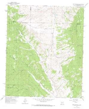 Iron Mountain topo map