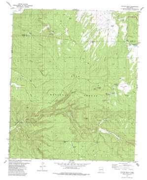Taylor Peak topo map