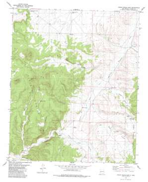 Indian Peaks East USGS topographic map 33107e8