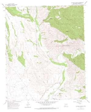 Canteen Canyon topo map