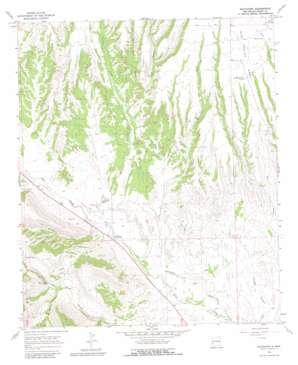 Buckhorn topo map