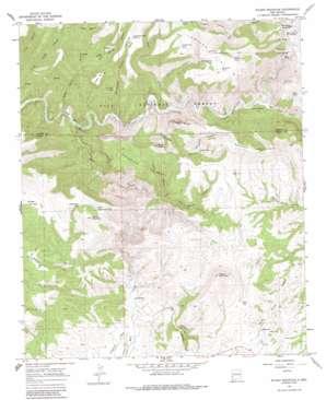 Wilson Mountain topo map