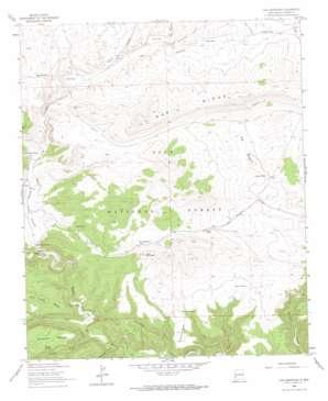 Loco Mountain topo map