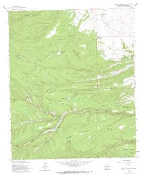 Negrito Mountain topo map