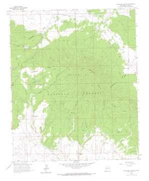 Pitchfork Canyon topo map