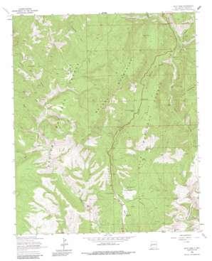 Saliz Pass USGS topographic map 33108e8