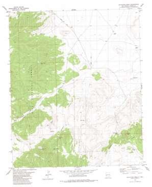 Salvation Peak topo map